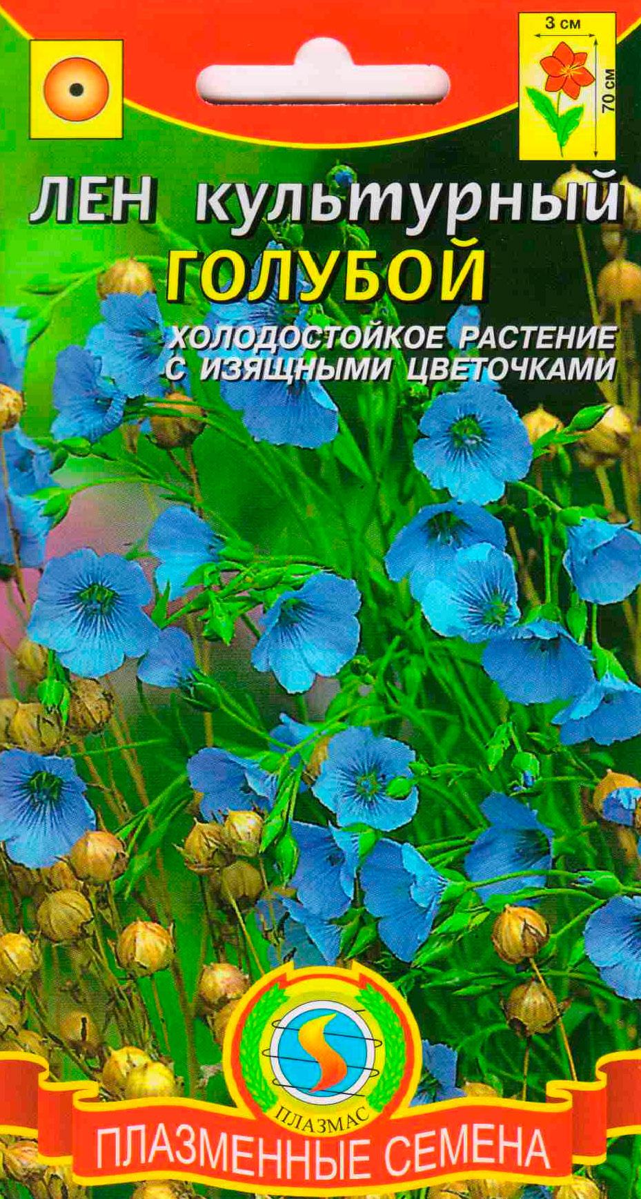 Цветы лен однолетний
