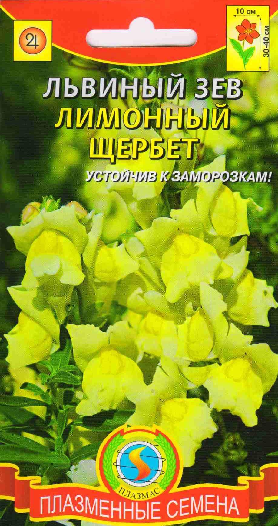 Семена цветов львиный зев