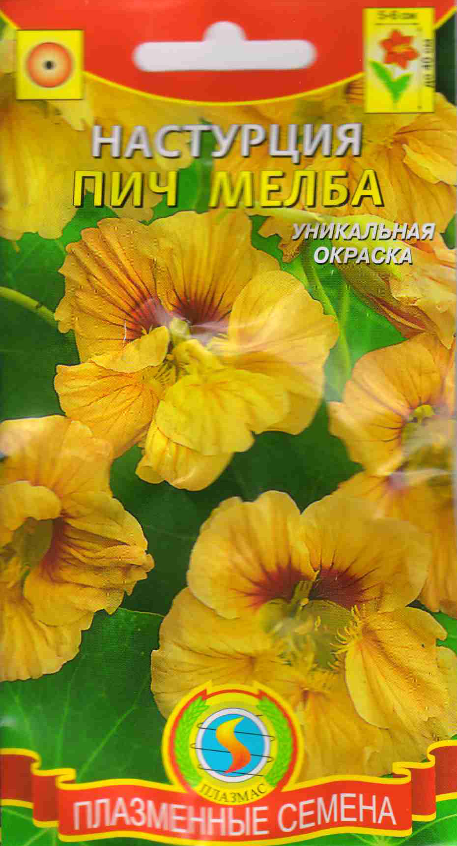 Цветы настурция махровая фото цветов